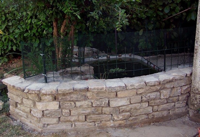 Terra da giardino in acquario una fonte di ispirazione for Piscina tartarughe